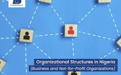 Organizational Structures in Nigeria (Business and Not-for-Profit Organizations)